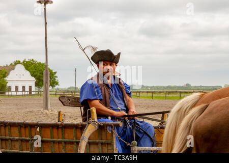 Kalocsa, Puszta, Hungary - May 23, 2019 : Portrait of traditioanl Hungarian Csikos horseman riding cart in rural corral. - Stock Photo
