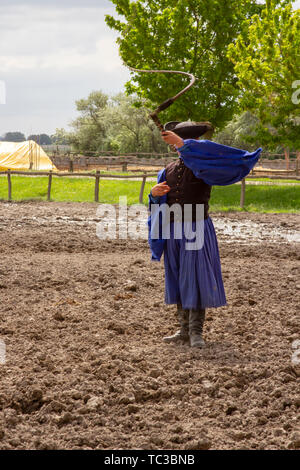 Kalocsa, Puszta, Hungary - May 23, 2019 : Traditional Csikos Hungarian cowboy displaying skills with bullwhip in corral. - Stock Photo