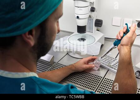 Embryology, ARU, Assisted Reproduction Unit, IVF, In Vitro Fertilization, Intra Cytoplasmic Sperm Injection, Hospital, Donostia, San Sebastian, - Stock Photo