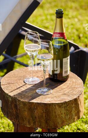 Bottle of champagne and two glasses, Basque farmhouse, Deba, Gipuzkoa, Basque Country, Spain, Europe - Stock Photo