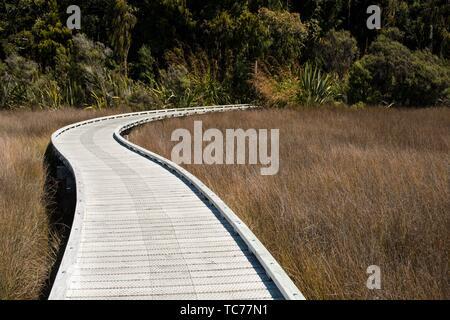 Walking path in Okarito, South Island, New Zealand. - Stock Photo