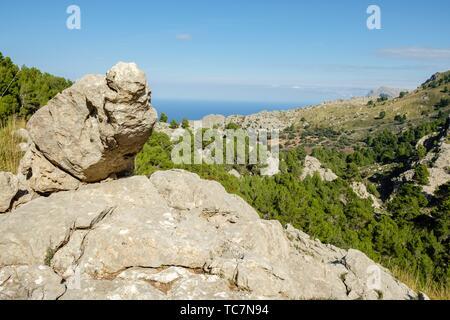 Es Binis, Fornalutx, Mallorca, balearic islands, Spain. - Stock Photo