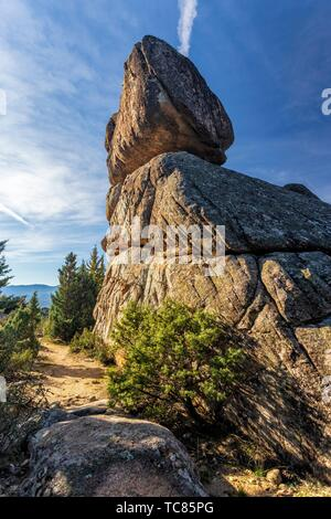 Granite cliffs, cistus and conifers at Fig Hill in The Pedriza Regional Park. Madrid. Spain. Europe. - Stock Photo