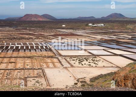 Panorama of the saltworks created by man. Salinas de Janubio, Lanzarote. Spain. - Stock Photo