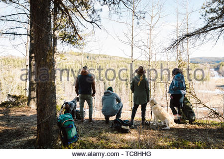 Friends with dogs hiking in sunny woods - Stock Photo