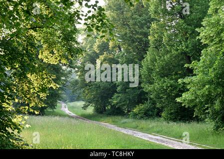 path in the Park of the Chateau of Rambouillet, Forest of Rambouillet, Haute Vallee de Chevreuse Regional Natural Park, Yvelines department, - Stock Photo