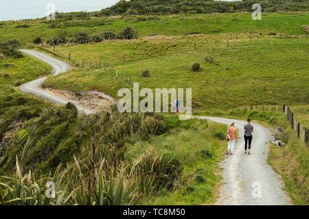 Cape Foulwind, West Coast, South Island, New Zealand. - Stock Photo