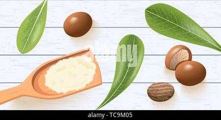 Shea nuts, leaves on white wooden shabby desk. shea butter on wooden spoon. shi tree pods. Vitellaria paradoxa. template copy space. cosmetics, aromat - Stock Photo