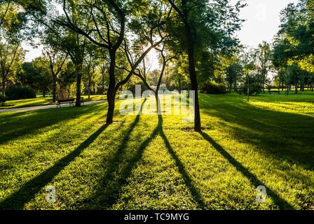 Gardens in the Old Turia River bed (Valencia, Spain) - Stock Photo