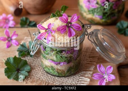 Preparation of herbal syrup against cough from wild common mallow flowers, leaves and cane sugar. - Stock Photo