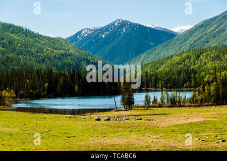 Immortals Bay, Kanas Lake, Altai, Xinjiang - Stock Photo