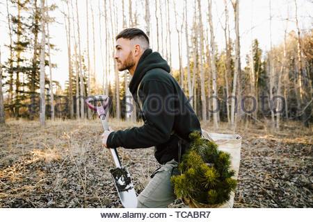 Male volunteer planting trees in woods - Stock Photo