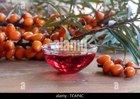 Sea buckthorn oil in a bowl with fresh berries. - Stock Photo
