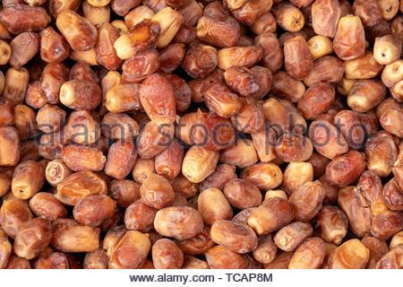 Close up shot of some Fresh Medjool dates. - Stock Photo