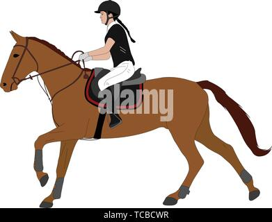 young woman riding horsecolor illustration. Equestrian sport. Equestrian dressage - vector - Stock Photo