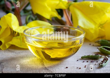 Evening primrose oil with fresh oenothera biennis flowers, pods and seeds in the background. - Stock Photo