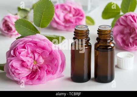 Two bottles of rose essential oil with rose flowers on a white background. - Stock Photo