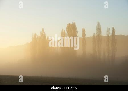 Sunrise with fog in the Pyrenees, Huesca Province, Aragon, Spain. - Stock Photo