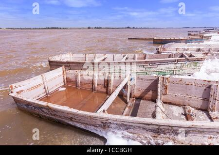 Retba lake, salted lake, named lac rose for colour of plants inside. - Stock Photo