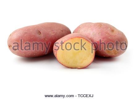 Cherie Potatoes (Solanum tuberosum) on a white background. - Stock Photo