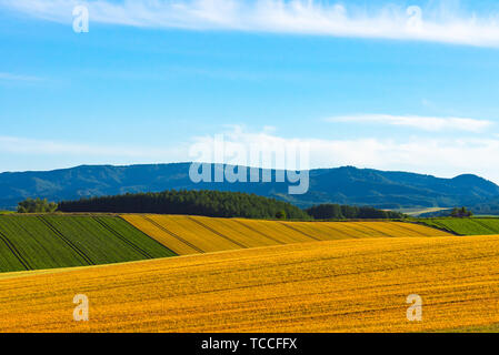 Panoramic rural landscape with mountains. Vast blue sky and white clouds over farmland field in a beautiful sunny day in springtime. - Stock Photo