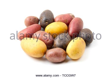 Potatoes with different pigmentation (Solanum tuberosum) on a white background. - Stock Photo