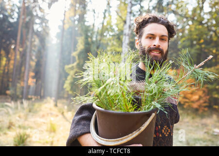 Forest worker with a bucket full of pine seedlings for reforestation in the forest - Stock Photo