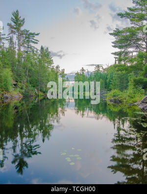 Lake One of the BWCA - Boundary Waters Canoe Area - with the lake taking a straight road looking perspective with forest on both sides - Stock Photo