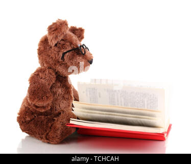Bear toy reading book isolated on white - Stock Photo