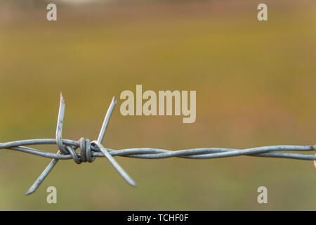 Barbed wire with blur nature background with copy space - Stock Photo