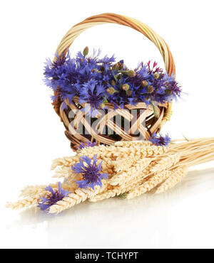 cornflowers in basket and ears of wheatisolated on white - Stock Photo