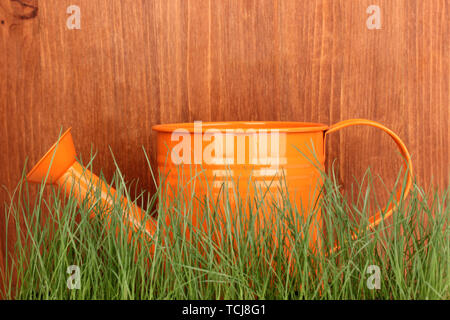 Green grass and watering can on wooden background - Stock Photo