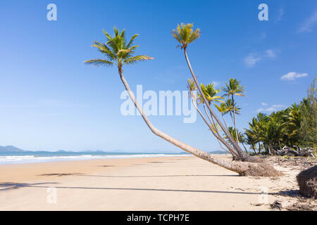 Aerial top view of beach with white sand, beautiful palm trees and warm turquoise tropical water in tropical paradise island, tropics