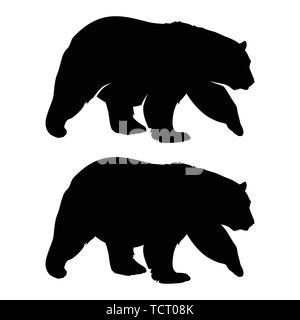 Bear silhouette. Black white vector illustration - Stock Photo
