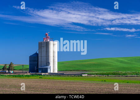 A grain storage elevator in the rolling hills of the Palouse, Washington, USA. - Stock Photo