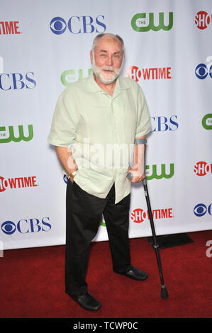 LOS ANGELES, CA. July 19, 2008: Robert David Hall - star of 'CSI: Crime Scene Investigation' - at the CBS All-Star Sumer TCA Party in Hollywood. © 2008 Paul Smith / Featureflash - Stock Photo