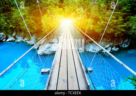 footbridge over clean water with sunbeam in forest - Stock Photo