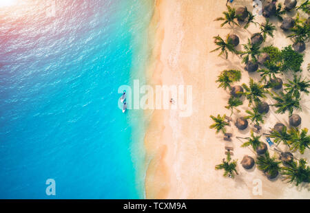 Aerial view of umbrellas, palms on the sandy beach and kayaks
