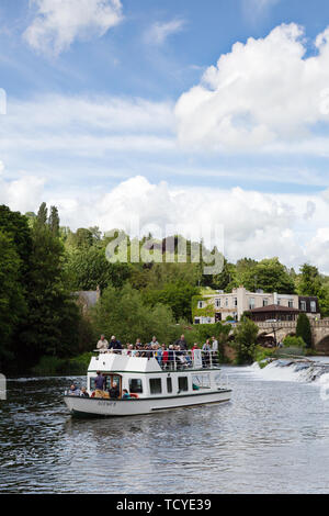 The River Avon at Bathampton Mill, with a pleasure boat full of tourists from Bath on a sunny summer day in June,  Somerset, England UK - Stock Photo