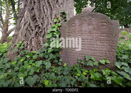 Gravestones stand on the old Jewish Cemetery in Bonn Schwarzrheindorf, Germany. - Stock Photo