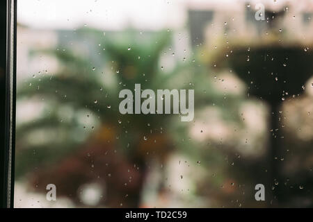 raindrops on window glass in the summer. palm trees in the background - Stock Photo