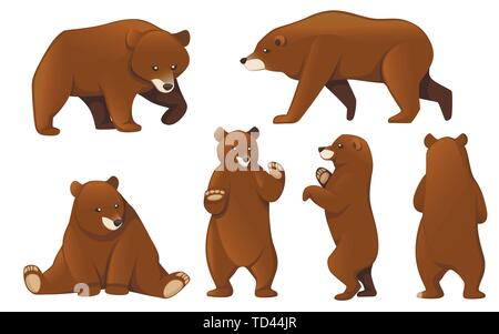 Set of Grizzly bears. North America animal, brown bear. Cartoon animal design. Flat vector illustration isolated on white background. - Stock Photo