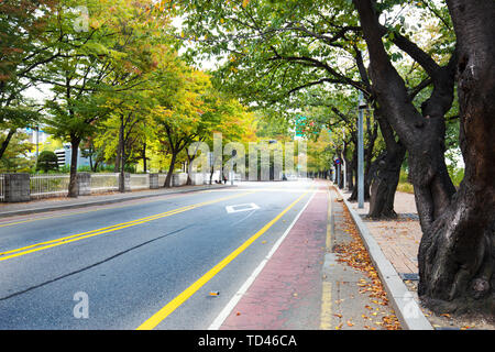 City roads with green trees in seoul - Stock Photo