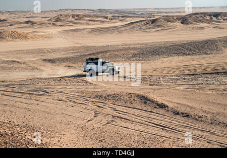 Race in sand desert. Car suv overcomes sand dunes obstacles. Competition racing challenge desert. Car drives offroad with clouds of dust. Offroad vehicle racing with obstacles in wilderness. - Stock Photo