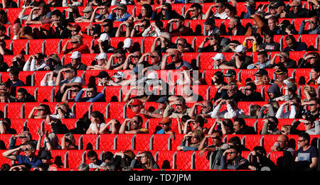 Valenciennes, France. 12th June, 2019. Fans watch the Group B match between Germany and Spain at the 2019 FIFA Women's World Cup in Valenciennes, France, June 12, 2019. Germany won 1-0 . Credit: Zheng Huansong/Xinhua/Alamy Live News - Stock Photo