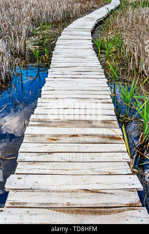 Nature wooden boardwalk through wetland grass at Dragoman Marsh in Sofia Province - the biggest natural karst wetland in Bulgaria - Stock Photo