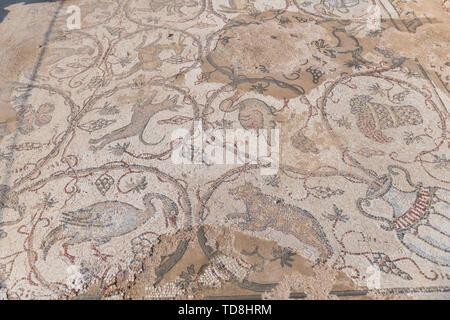 Fragment of an ancient floor mosaic in Caesarea .Israel - Stock Photo