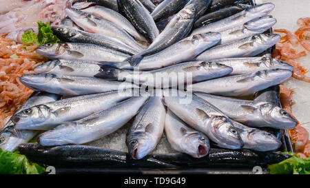 Fresh fish Sea bass and seafood on ice at the fish market - Stock Photo
