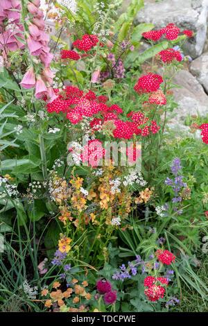 Elements of Sheffield garden Designed by Emily Barnes at RHS Chatsworth flower show 2019. Chatsworth, Derbyshire, UK - Stock Photo
