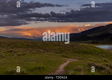 Pink Sunset Over Lamar valley with Trail Leading into field - Stock Photo